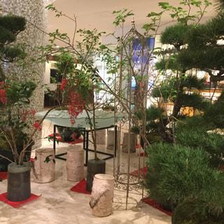 城山観光ホテル さつま土産 逸品館でハーブティーが販売開始となりました。